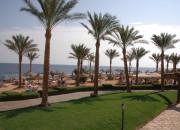 Queen Sharm Resort Beach. landscape