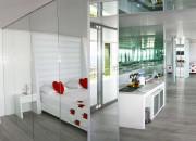Design Suite ROH