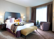 Club Rotana Suite without Extra Bed