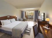 Standard Room. Standard King Bed Room