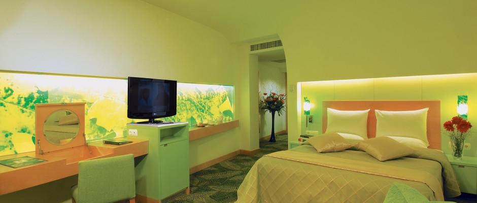 Standard Room Partiel View