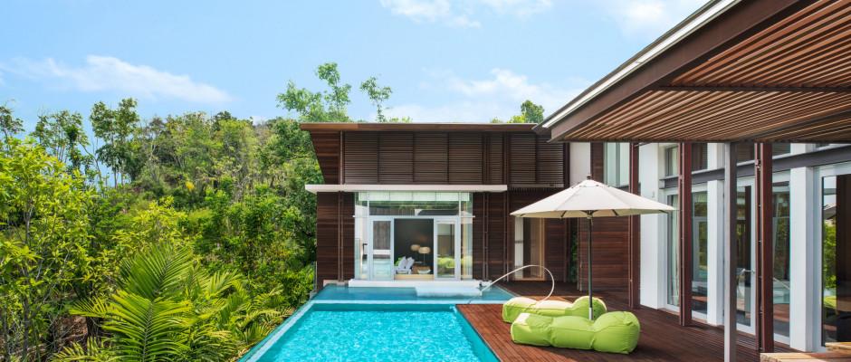 Wow Jungle Oasis